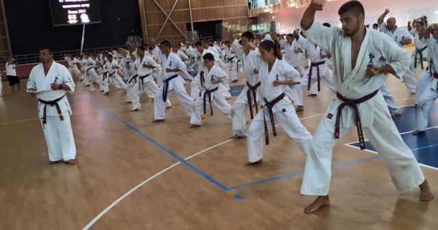 Тренировъчен лагер по карате киокушин 2015