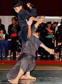 Силат бойно изкуство